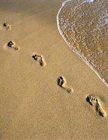 sable empreintes